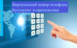 Приложения предоставляющие виртуальный номер телефона для смартфонов на iOS и Android бесплатно